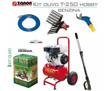 Kit per raccolta e potatura uso hobbistico - Zanon T-250 con motore benzina