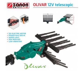 Olivar Zanon - Abbacchiatore Elettrico Hobbistico 12 V con asta telescopica 170/250 cm