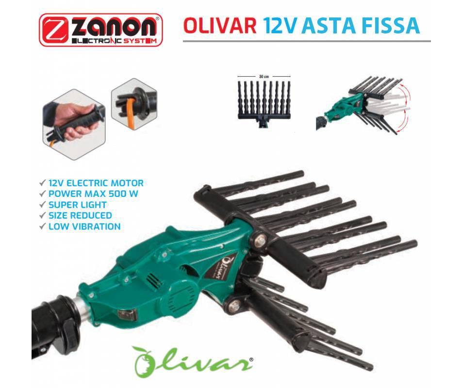 Olivar Zanon - Abbacchiatore Elettrico Hobbistico 12 V con Asta Fissa